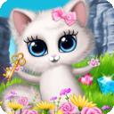 公主宠物小猫咪