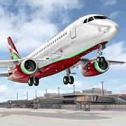 乘客飞机航班模?拟